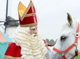 Afbeelding behorende bij De Grote Sinterklaas Film