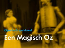 Afbeelding behorende bij Een magisch Oz