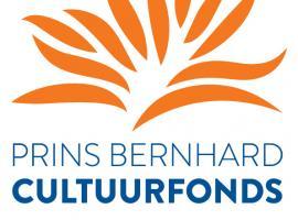 Afbeelding behorende bij Cultuurfonds Gelderland zoekt kandidaten voor Bokaal | Categorie muziek