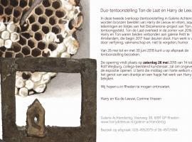 Afbeelding behorende bij Duo tentoonstelling Ton de Laat en Harry de Leeuw