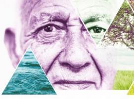 Afbeelding behorende bij Deze zomer: Kijken en creëren in de natuur   Kunstproject voor ouderen